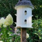 Our Favorite Birdhouses & Bird Feeders