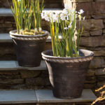 New Garden Pots and Totes