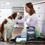 RIGHT AT HOME: Gear and gadgets for cleaning a dirty dog