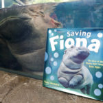 Professor Fiona? Famous baby hippo an educational force