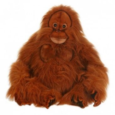 Remember the Wildlife Conservation Society & Shop our Wildlife Toys!