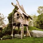 Tree House Fun!