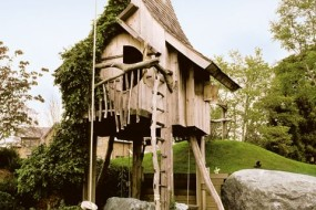 Tree House Fun!