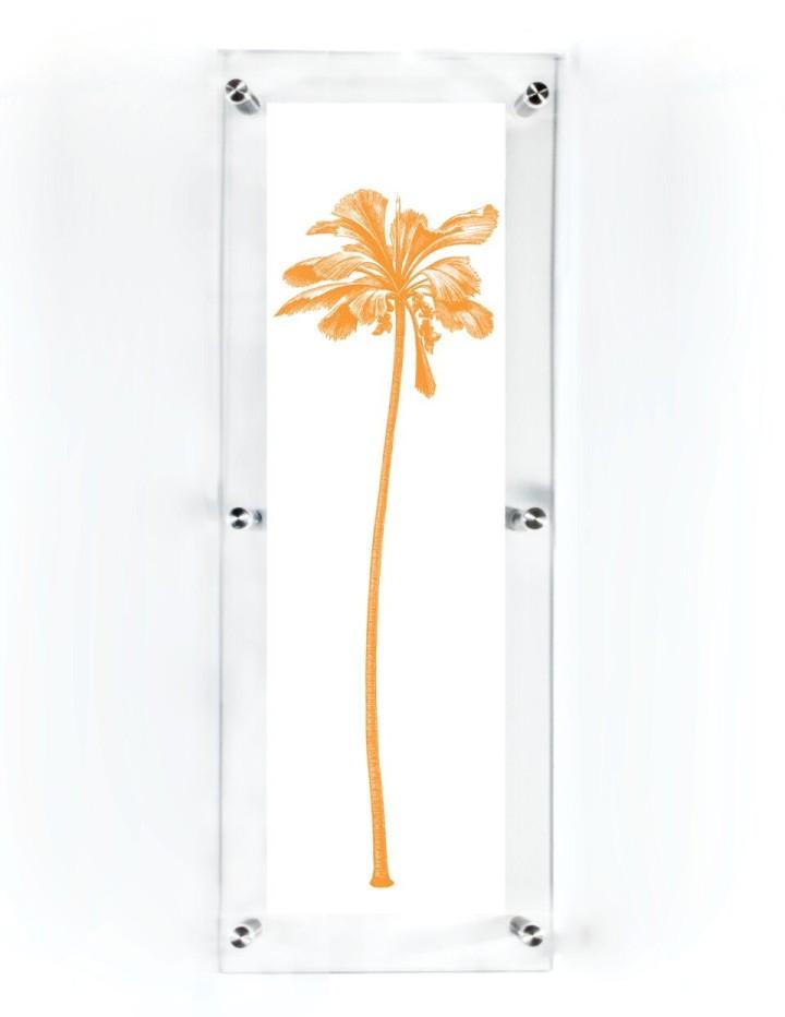 acrylic-framed-coco-de-mer-palm-tree-wall-art-print-2