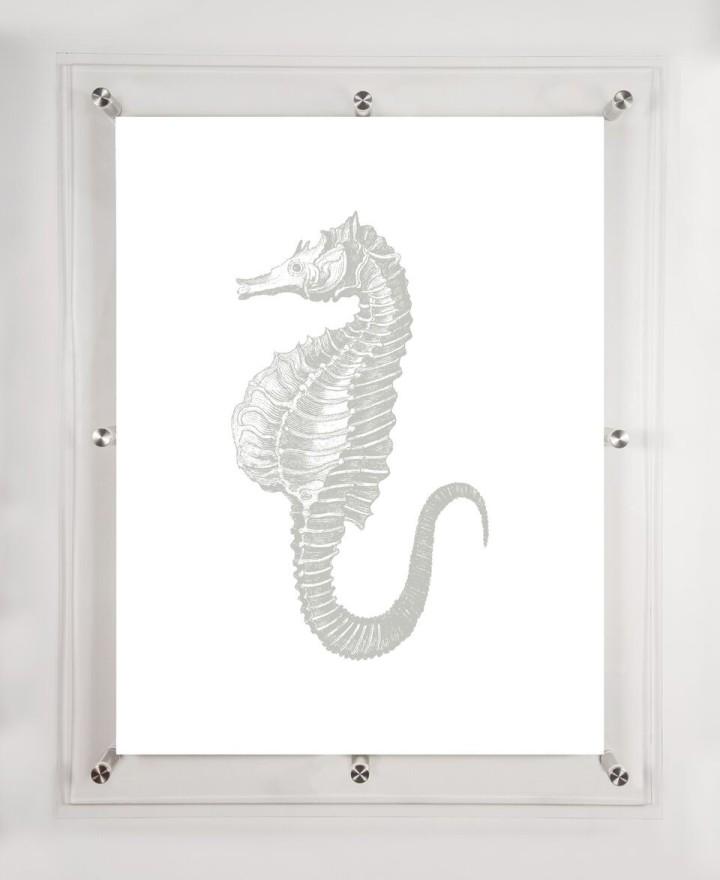 acrylic-framed-seahorse-art-print