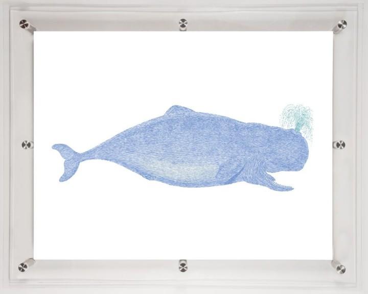acrylic-framed-whale-wall-art-print-1