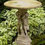 Announcing the Winner of our Birdbath Giveaway!
