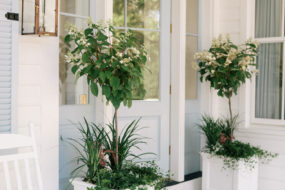 Pretty Front Porch Planters