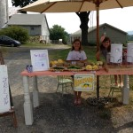 Summer Fun! Farm Stand for Kids