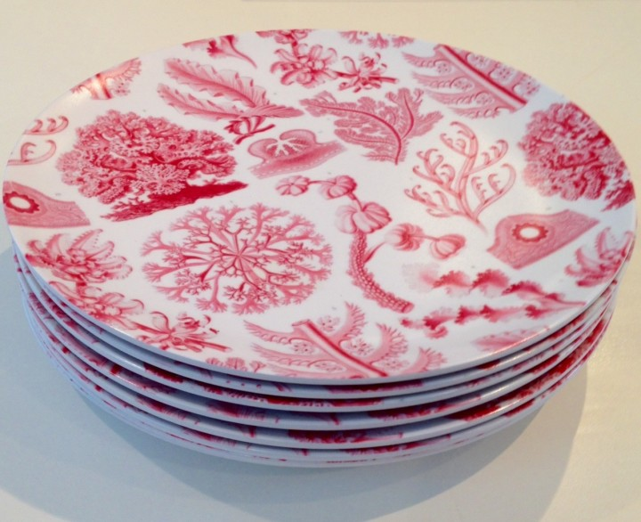 pink-coral-melamine-outdoor-plates-1