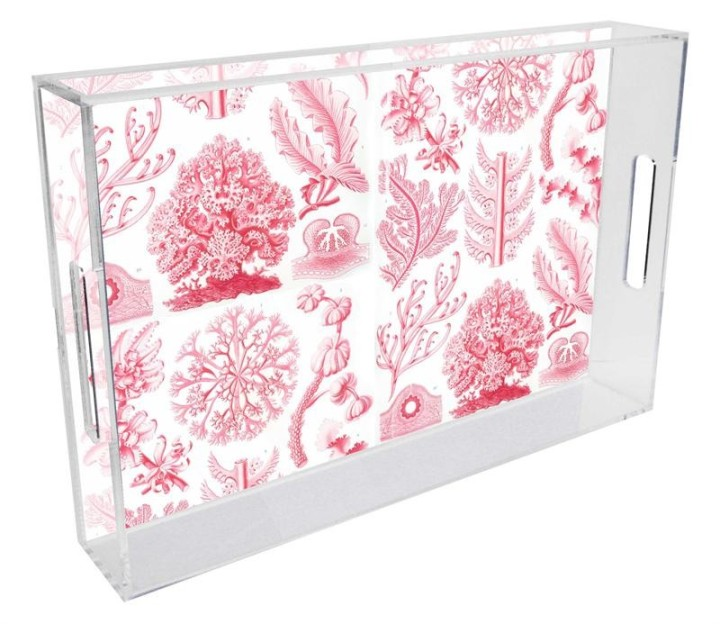 pink_coral_lucite_tray-1