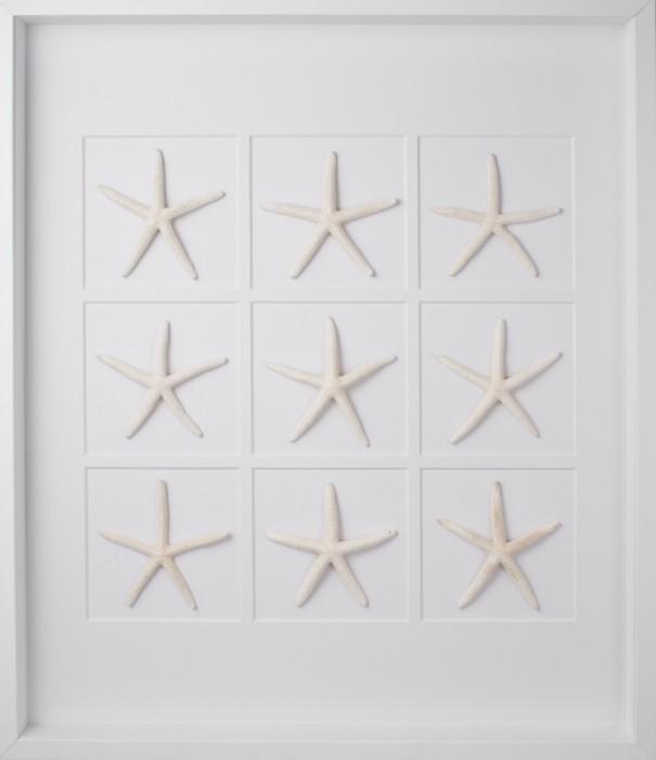 starfish-white_frame