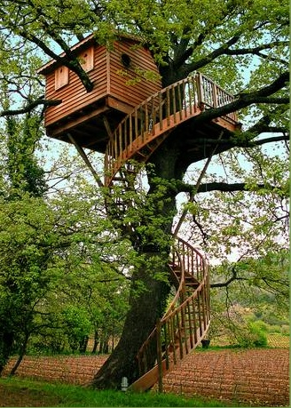 treehouse8