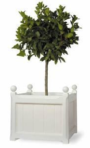 windsor white garden planter